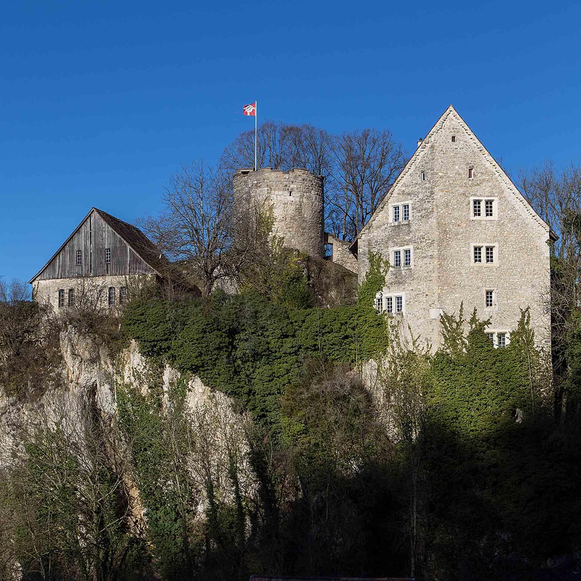Château de Plejouse